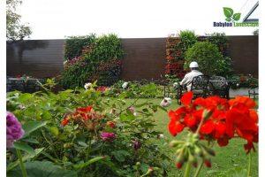 Tìm hiểu về những câu hỏi vườn tường khí canh liên hệ 0989068668