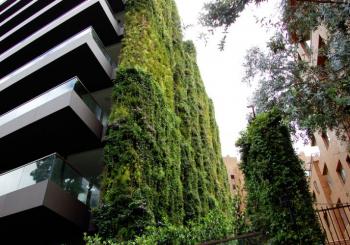 Tòa nhà vườn tường khí canh lớn nhất thế giới tại Colombia