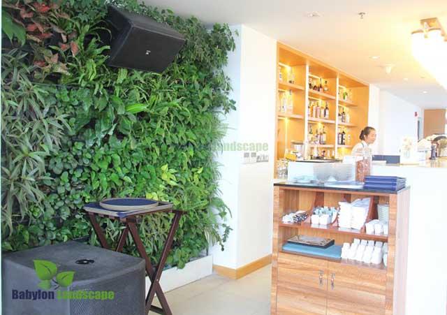 Thi công cảnh quan tại khách sạn 5 sao TMS – Đà Nẵng