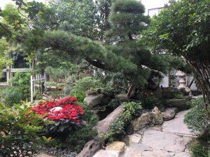 Bề mặt vật liệu là yếu tố quan trọng trong thi công cảnh quan sân vườn