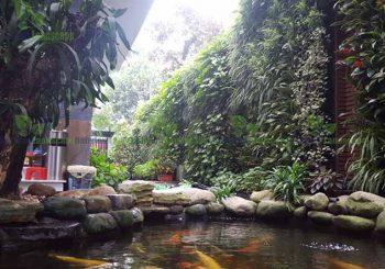 Vườn đứng biệt thự tại trung tâm thành phố Việt Trì