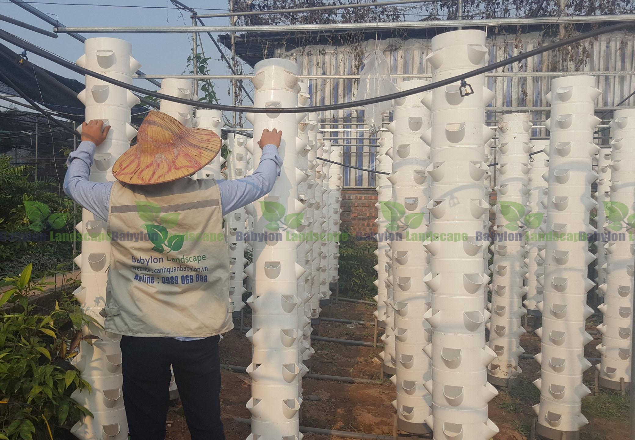 Vườn ươm cây trồng khí canh dự bị mang lại lợi ích gì?