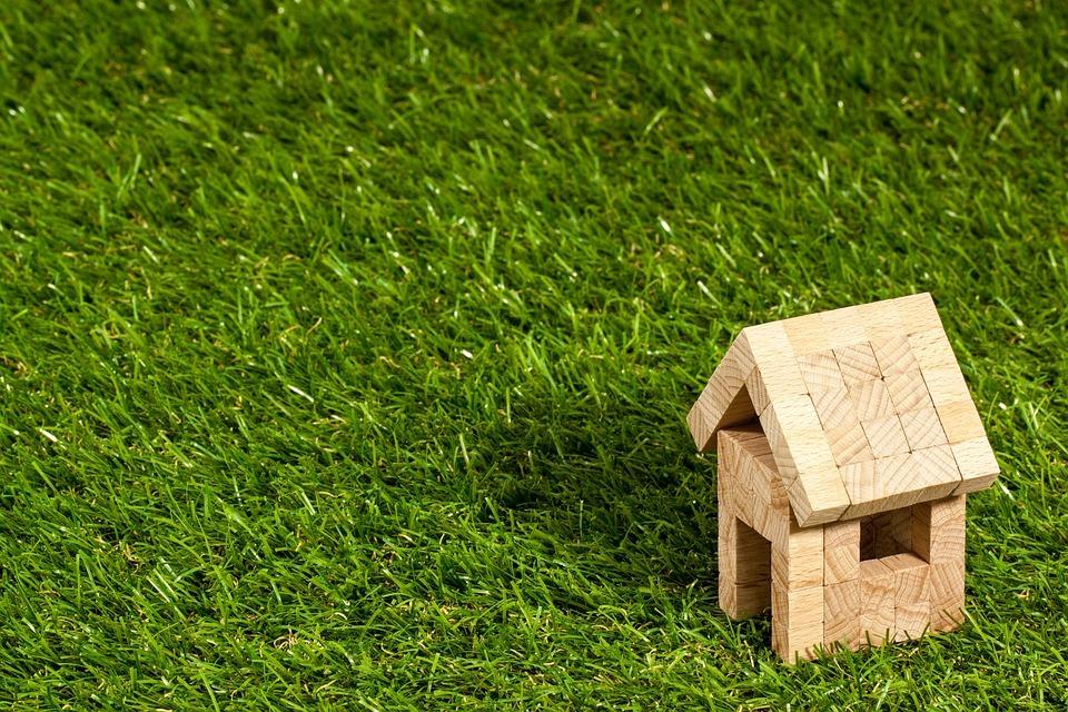 Trồng cỏ sân vườn, những lưu ý và cách chọn thảm cỏ phù hợp