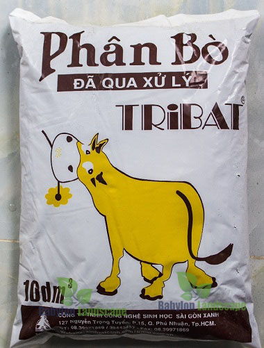 phan-bo-tribat